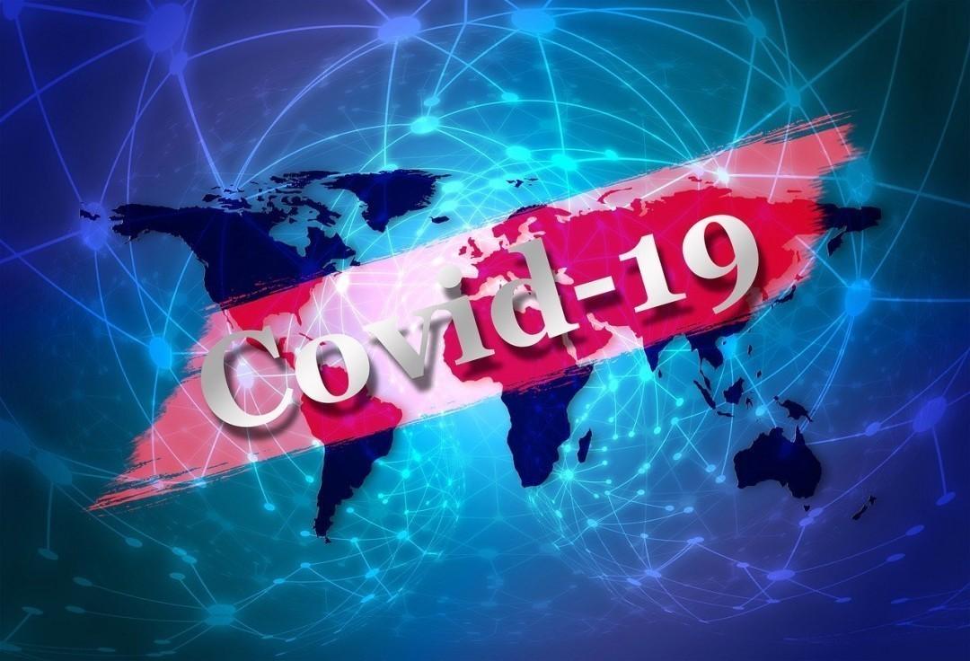 picture2_pandemija-koronav_366240_p0